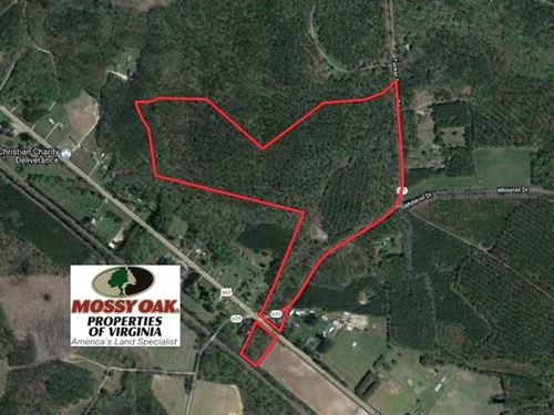 Reduced, 74.81 Acres of Recreatio : Ivor : Southampton County : Virginia