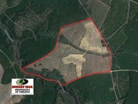 150 Acres of Farm And Hunting Land : Wakefield : Sussex County : Virginia