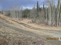 Near The Golf Course And Other Loc : Soldotna : Kenai Peninsula Borough : Alaska