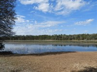 29 Beautifully Wooded Acres : Keystone Heights : Clay County : Florida