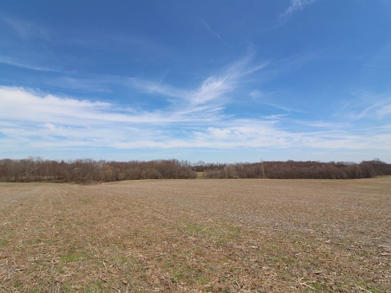 Taylor Rd - 77 Acres : Doylestown : Wayne County : Ohio