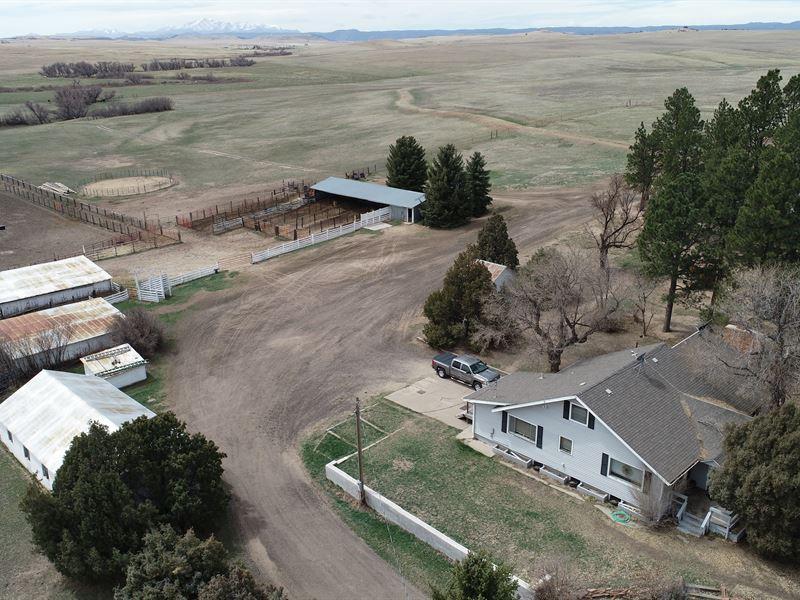 Antelope Creek Ranch : Franktown : Douglas County : Colorado