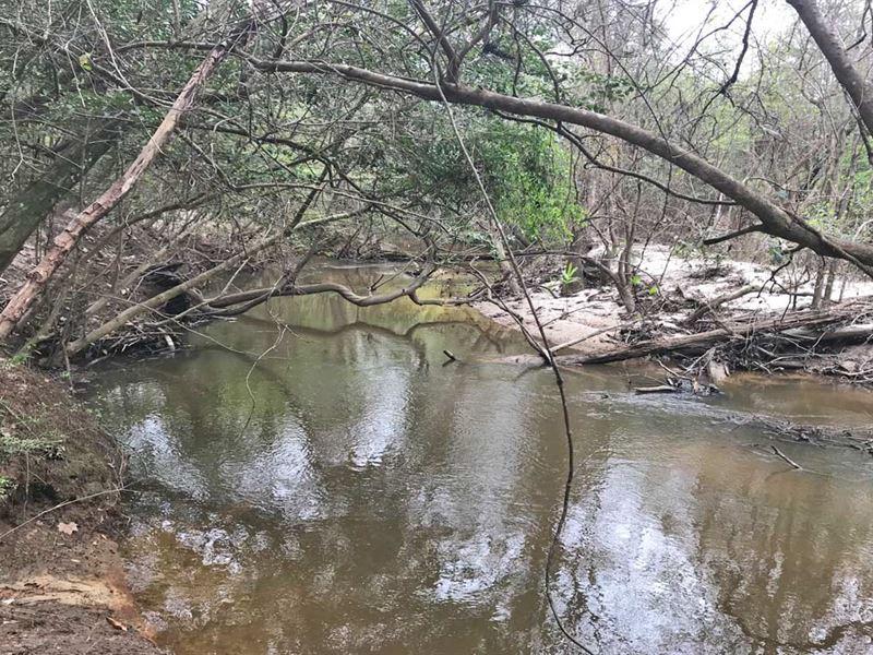 Surveyors Creek Tract : Gilbertown : Choctaw County : Alabama