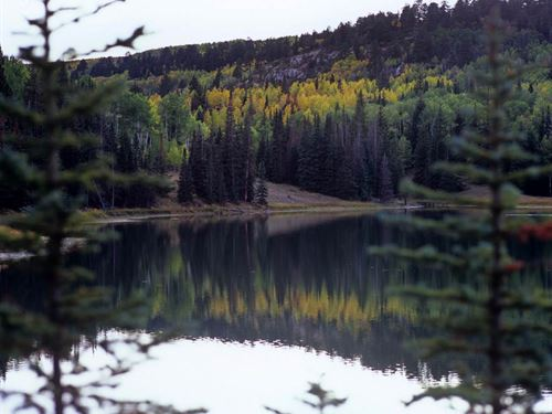 Hidden Lakes Ranch : Glade Park : Mesa County : Colorado