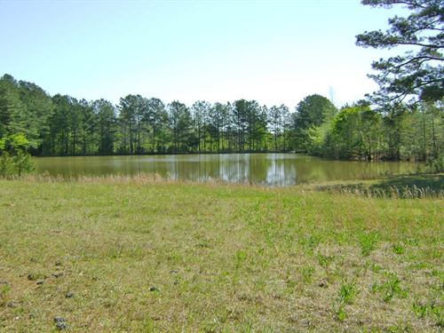 Bluff Tract : Fayette : Alabama