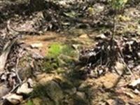 Coal Mine Mountain, Jackson County : Bridgeport : Jackson County : Alabama
