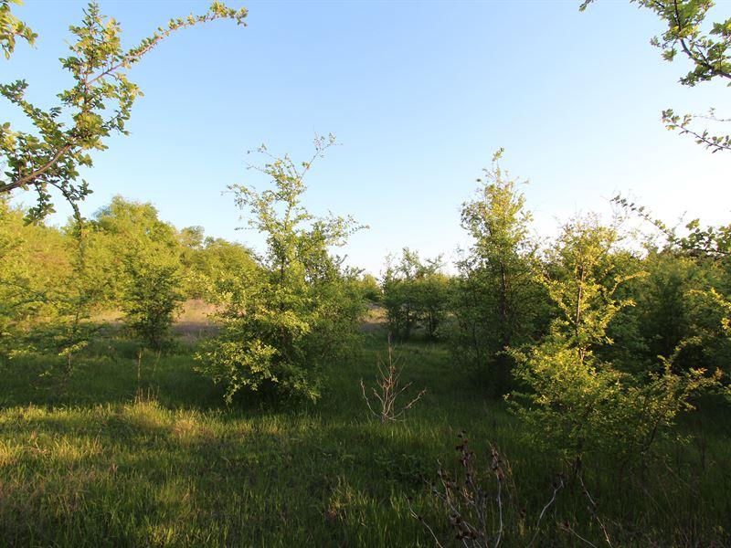 Small Recreational Acreage Lamar Co : Petty : Lamar County : Texas
