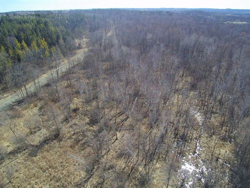 Hilltop Build Site In Forest : Kewaskum : Washington County : Wisconsin