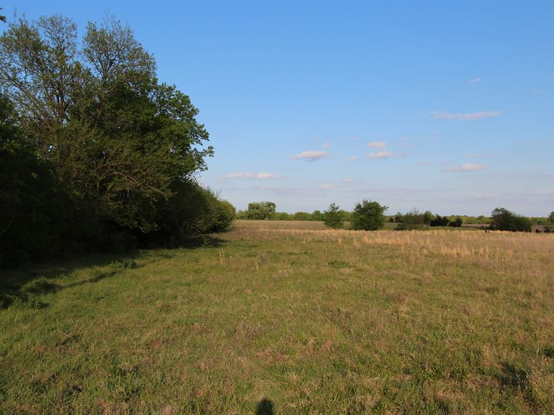 Ranch Land And Home Build Site : Petty : Lamar County : Texas