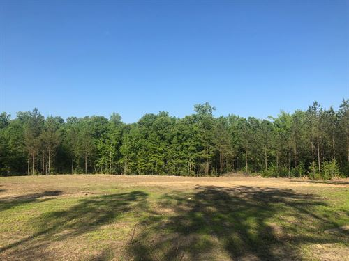 Beautiful Mini-Farm Near Auburn : Waverly : Lee County : Alabama