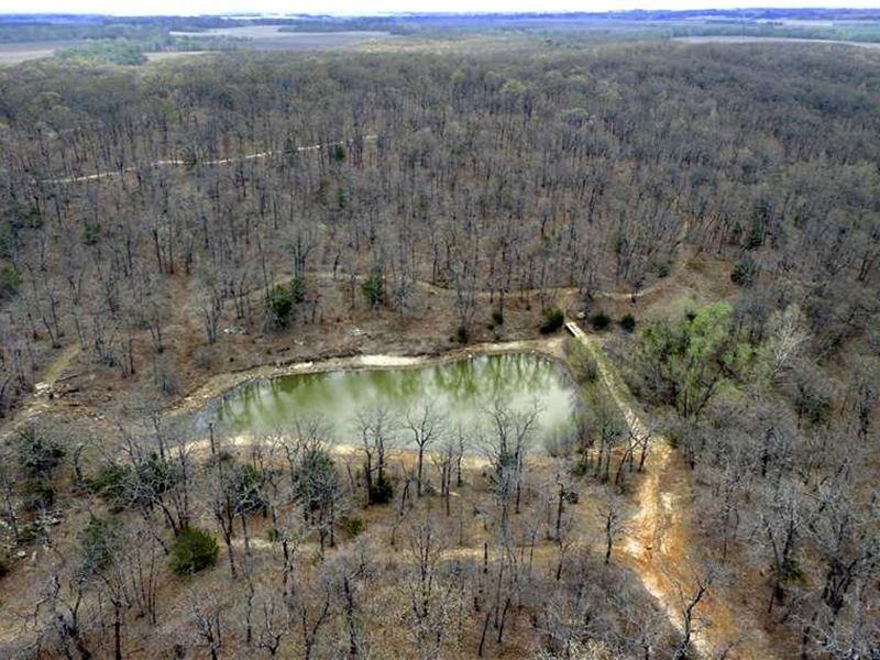 Little Ozarks, 40 Acres in Wils : Coyville : Wilson County : Kansas