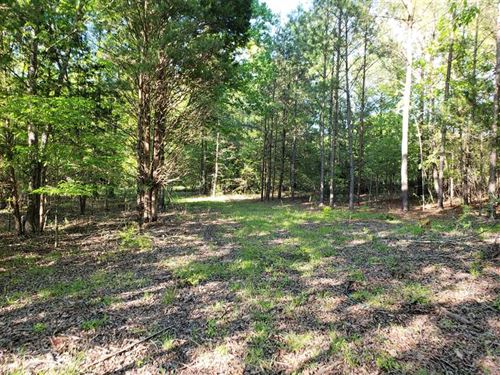 40 Acres in Rock Hill, York County : Rock Hill : York County : South Carolina
