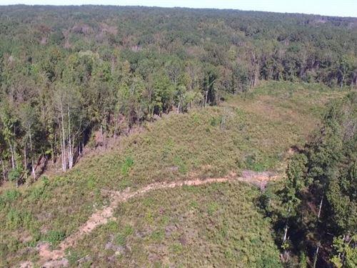 Gettys Road Homesite : Elgin : Kershaw County : South Carolina
