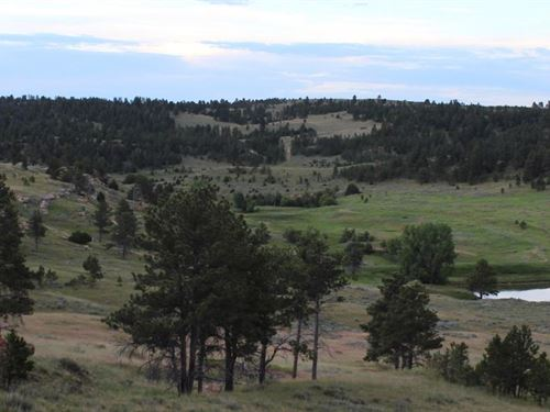 Cabin Creek Ranch : Sheridan : Wyoming