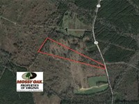 20 Acres of Prime Hunting And Recr : McKenney : Dinwiddie County : Virginia