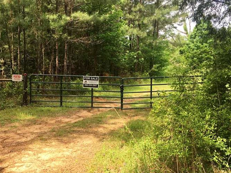 40 Acre Rural Hunting And Recreati : Rusk : Cherokee County : Texas