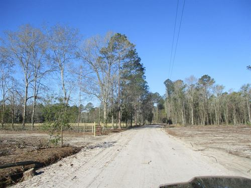 Perfect Homesite On Hopewell Rd : Patterson : Pierce County : Georgia