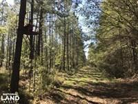 Summerville Home Site : Ridgeville : Dorchester County : South Carolina