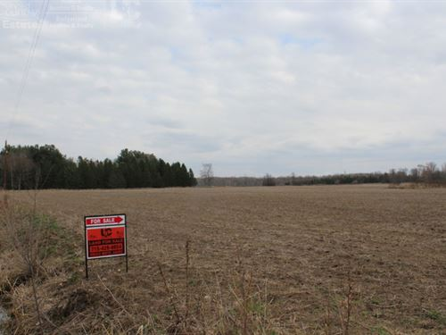 Woods & Ag Land 80 Acres : Owen : Clark County : Wisconsin