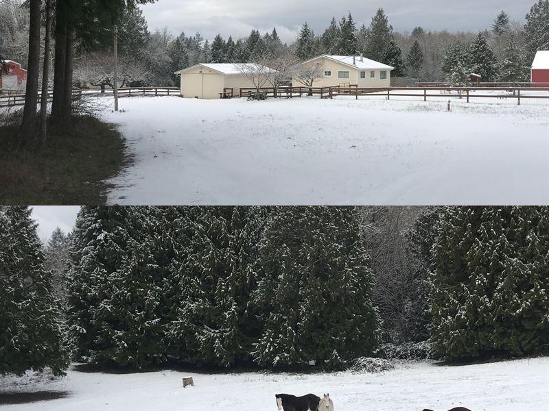 Urban Farm And Horse Property : Brownsville : Kitsap County : Washington
