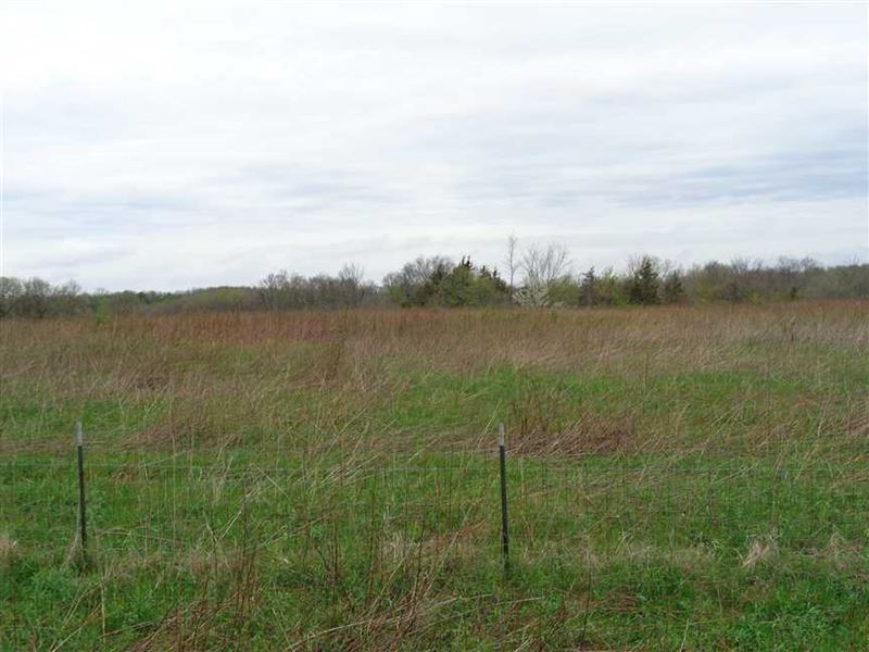 10 Acres M/L Hunting Ground in Mon : Moravia : Monroe County : Iowa