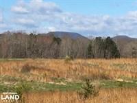 Landrum Pastureland With Creek & Ha : Landrum : Spartanburg County : South Carolina