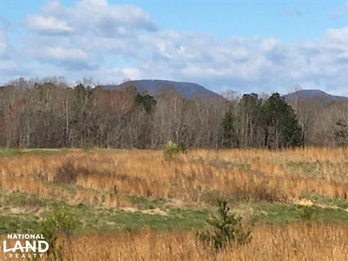 Landrum Pastureland With Creek & Ha : Landrum : Spartanburg County : South Carolina