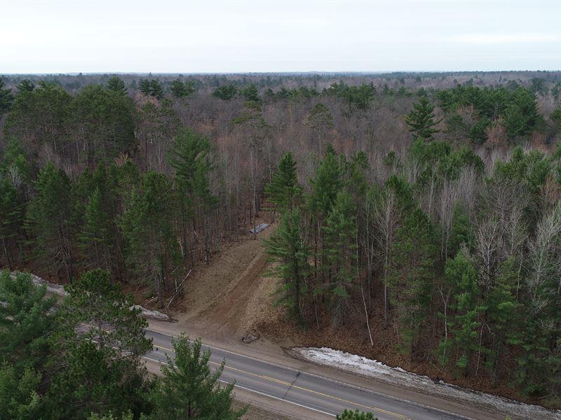 Northwoodsy Lot With Abundant Large : Hazelhurst : Oneida County : Wisconsin