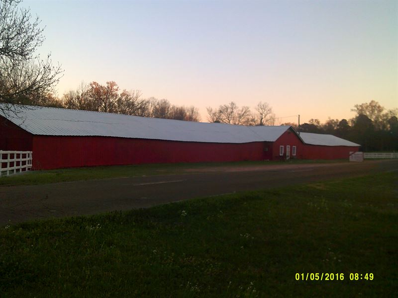 80 Stall Horse Racnch For Sale : Jackson : Hinds County : Mississippi