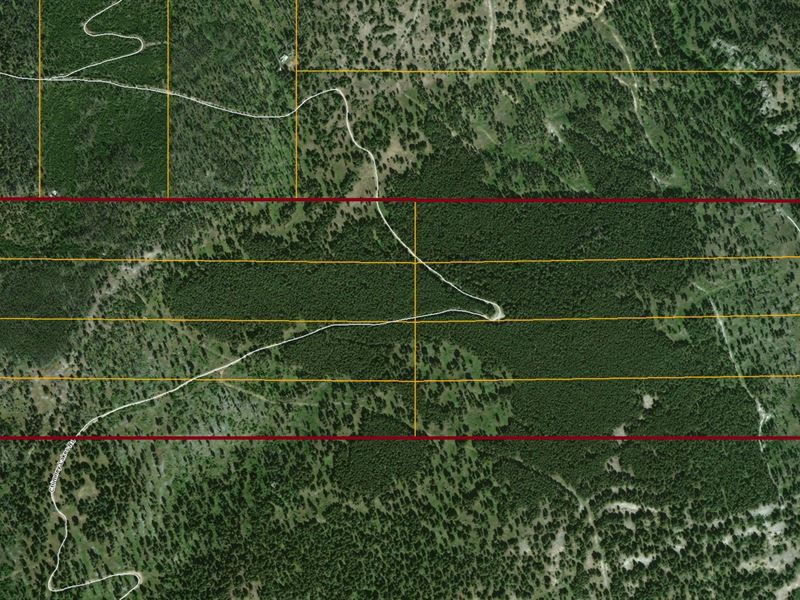 Chimney Creek Seclusion : Helmville : Powell County : Montana