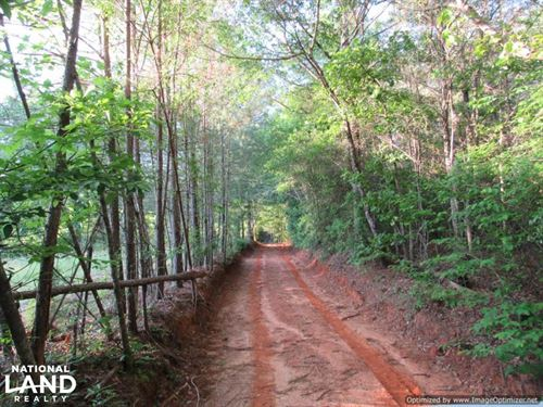 Timber Investment Tract Near Sebast : Conehatta : Newton County : Mississippi