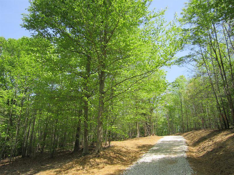 Burge Place Lot : Appomattox : Appomattox County : Virginia