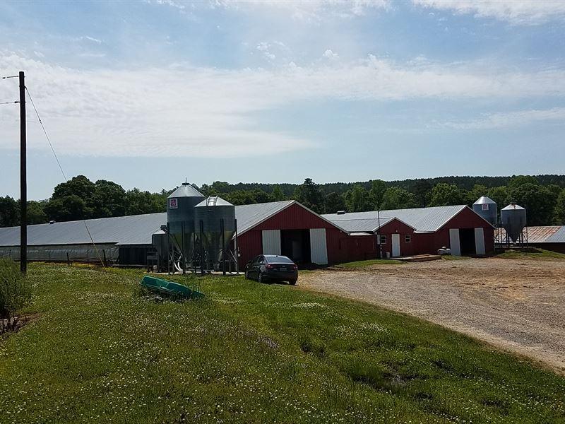 Smitherman Farm-Four House Breeder : Cullman : Cullman County : Alabama