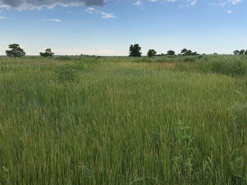 Black Squirrel Creek Ranch : Peyton : El Paso County : Colorado