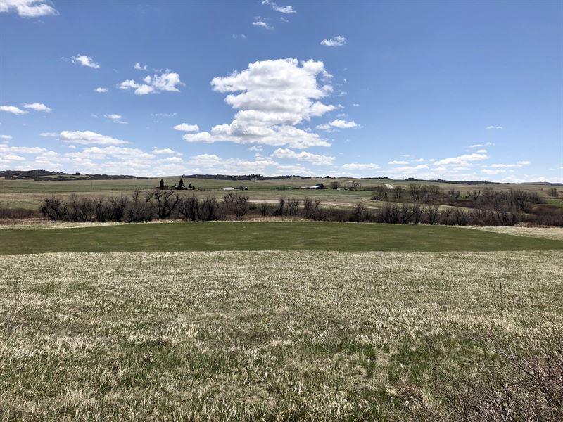 Lake Gulch Live Water Acreage : Castle Rock : Douglas County : Colorado