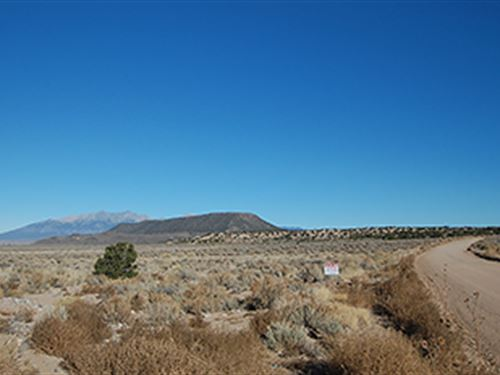 Serene Property Near Fort Garland : Fort Garland : Costilla County : Colorado
