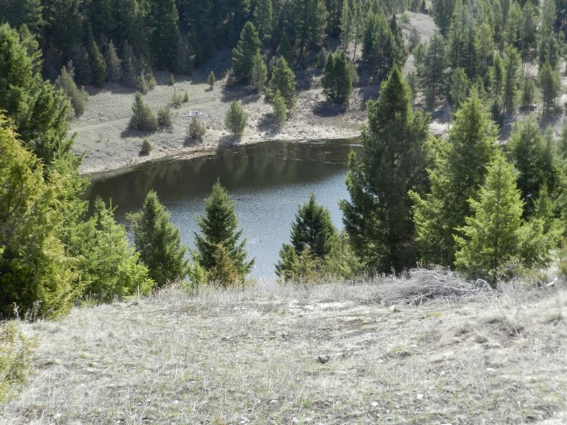 Easy Does It : Philipsburg : Granite County : Montana