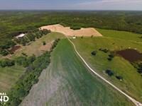 GD Smith Cattle Farm : Clinton : Laurens County : South Carolina