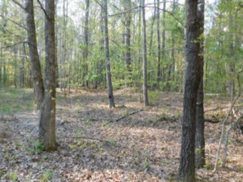 80 Acres In Yalobusha County : Tillatoba : Yalobusha County : Mississippi
