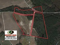 91 Acres of Farm And Timber Land : Lumberton : Robeson County : North Carolina