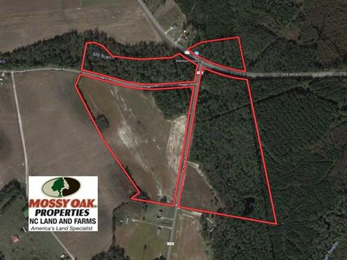 91 Acres of Farm And Timber Land : Lumberton : Robeson County : North Carolina