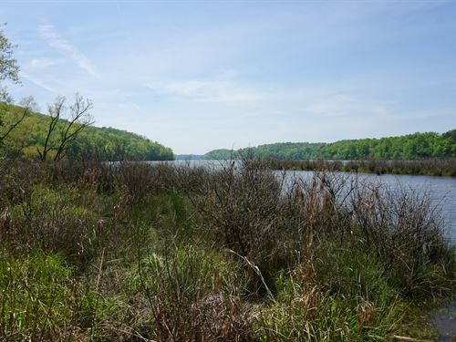 Waterfront 143 Acres : Soddy Daisy : Hamilton County : Tennessee