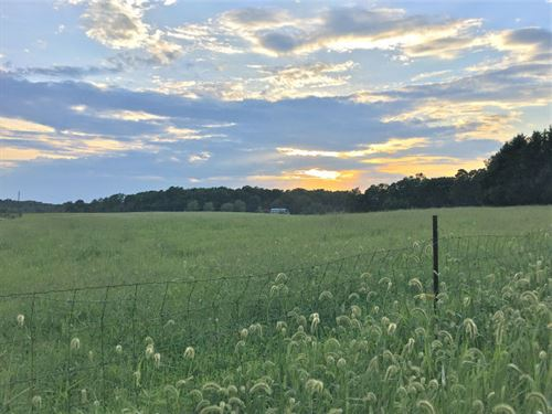 Habersham County Farm : Mt Airy : Habersham County : Georgia