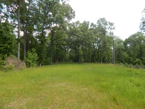 501 Acres In Adams County : Sibley : Adams County : Mississippi