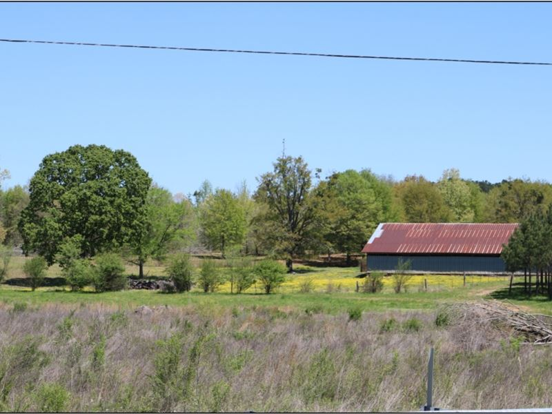 110 Acres In Neshoba County : Philadelphia : Neshoba County : Mississippi