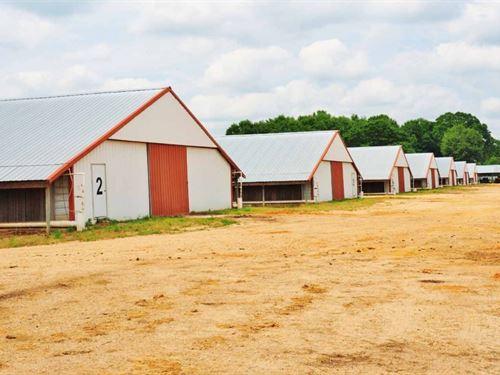 8 House Broiler Farm For Sale Covin : Mount Olive : Covington County : Mississippi