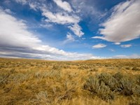 40 Acres Sweetwater County, Wy : Red Desert Basins : Sweetwater County : Wyoming