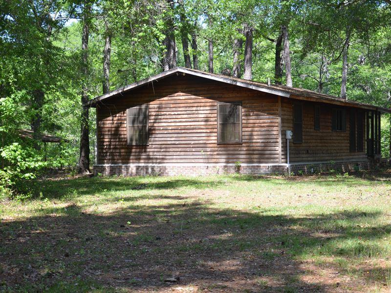 Ebenezer Creek Paradise : Rincon : Effingham County : Georgia