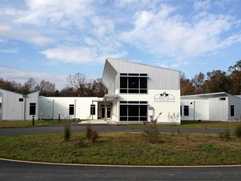 Animal Sanctuary Farm Auction Georgetown Sussex