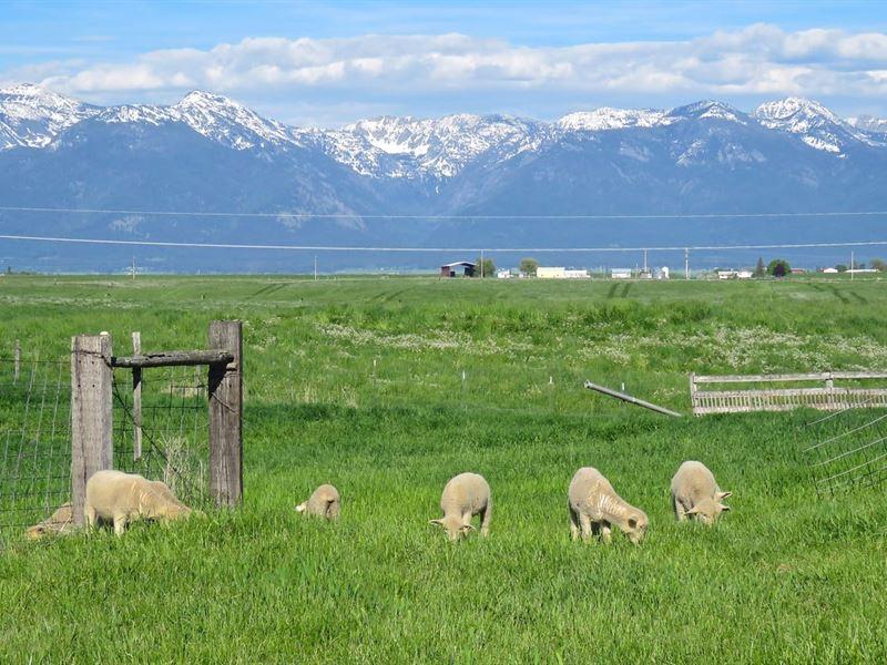 Mission Mountain Valley Views : Polson : Lake County : Montana